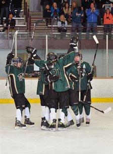 The Mountain Vista ice hockey team has had plenty to celebrate during its first season.
