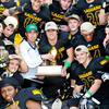 2014 high school football state champions and playoff brackets