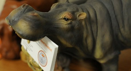 Just to show how dedicated they are, Hutto fans even have hippo business card holders.