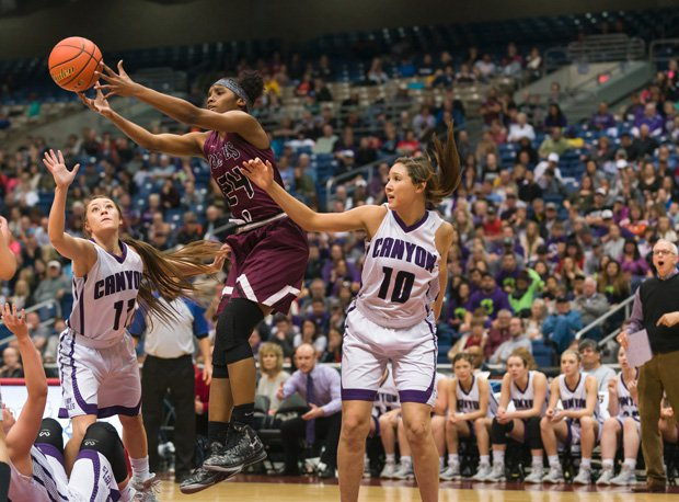 Mansfield Timberview won the Texas 5A state girls basketball title.