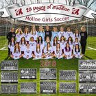 Moline Maroons Girls Varsity Soccer Spring 18-19 team photo.