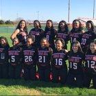 Cedar Hill Longhorns Girls JV Softball Spring 17-18 team photo.