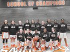 Whitney Young Dolphins Girls JV Basketball Winter 18-19 team photo.