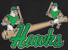 North Lenoir Hawks Boys JV Baseball Spring 17-18 team photo.