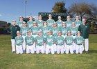 Green Valley Gators Boys JV Baseball Spring 17-18 team photo.