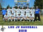 Lincoln Fighting Zebras Boys JV Baseball Spring 17-18 team photo.