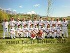 Paonia Eagles Boys Varsity Baseball Spring 16-17 team photo.