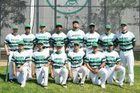Lincoln Hornets Boys Varsity Baseball Spring 16-17 team photo.