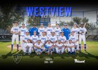 Westview Knights Boys Varsity Baseball Spring 16-17 team photo.