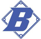 Batesville Bulldogs Boys Varsity Baseball Spring 16-17 team photo.