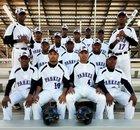 Parker Thundering Herd Boys Varsity Baseball Spring 16-17 team photo.