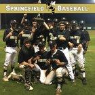 Springfield Yellowjackets Boys Varsity Baseball Spring 16-17 team photo.