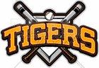 South View Tigers Boys Varsity Baseball Spring 16-17 team photo.