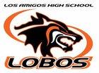 Los Amigos Lobos Boys Varsity Baseball Spring 16-17 team photo.
