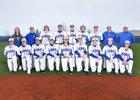 Auburn Mountainview Lions Boys Varsity Baseball Spring 16-17 team photo.