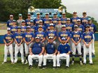 Sheridan Yellowjackets Boys Varsity Baseball Spring 16-17 team photo.