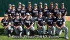 Permian Panthers Boys Varsity Baseball Spring 16-17 team photo.