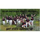 Melba Mustangs Boys Varsity Baseball Spring 16-17 team photo.