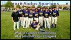 Sodus Spartans Boys Varsity Baseball Spring 16-17 team photo.