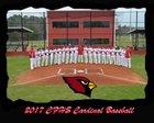 Camden Fairview Cardinals Boys Varsity Baseball Spring 16-17 team photo.