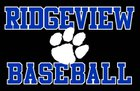 Ridgeview Panthers Boys Varsity Baseball Spring 16-17 team photo.