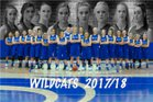 Fruita Monument Wildcats Girls Varsity Basketball Winter 17-18 team photo.