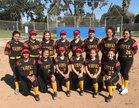 Fairfax Lions Girls JV Softball Spring 16-17 team photo.