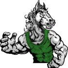 Homestead Mustangs Boys Varsity Wrestling Winter 18-19 team photo.
