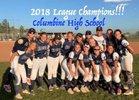 Columbine Rebels Girls Varsity Softball Fall 18-19 team photo.