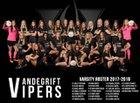 Vandegrift Vipers Girls Varsity Soccer Winter 17-18 team photo.