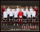 Kentlake Falcons Boys Varsity Soccer Spring 17-18 team photo.