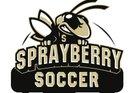 Sprayberry Yellow Jackets Boys Varsity Soccer Spring 17-18 team photo.