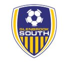 Glenbrook South Titans Boys Varsity Soccer Fall 18-19 team photo.