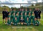 St. Mary Catholic Central Falcons/Kestrels Boys Varsity Soccer Fall 18-19 team photo.
