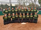 Livermore Cowboys Girls Varsity Softball Spring 17-18 team photo.