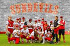 Mt. Carmel Sundevils Girls Varsity Softball Spring 17-18 team photo.