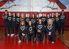 Franklin Pierce Cardinals Girls Varsity Softball Spring 17-18 team photo.