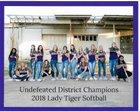 Mt. Vernon Tigers Girls Varsity Softball Spring 17-18 team photo.