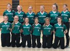 Valley Springs Tigers Girls Varsity Softball Spring 17-18 team photo.