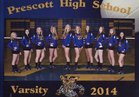 Prescott Badgers Girls Varsity Volleyball Fall 14-15 team photo.