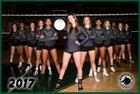 Edmond Santa Fe Wolves Girls Varsity Volleyball Fall 17-18 team photo.