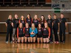 New Richmond Tigers Girls Varsity Volleyball Fall 17-18 team photo.