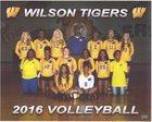 Wilson Tigers Girls Varsity Volleyball Fall 17-18 team photo.