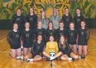 Ashwaubenon Jaguars Girls Varsity Volleyball Fall 17-18 team photo.