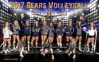 Palmer Ridge Bears Girls Varsity Volleyball Fall 17-18 team photo.