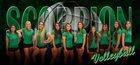 Farmington Scorpions Girls Varsity Volleyball Fall 17-18 team photo.