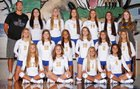 Lexington Wildcats Girls Varsity Volleyball Fall 17-18 team photo.