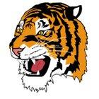 Lake City Tigers Boys Varsity Basketball Winter 17-18 team photo.