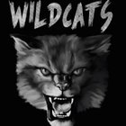 Wendover Wildcats Boys Varsity Soccer Spring 16-17 team photo.