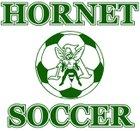 Aiken Fighting Green Hornets Boys Varsity Soccer Spring 16-17 team photo.